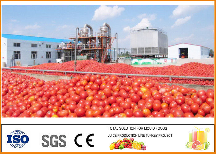Complete Ketchup Tomato Paste Production Line CFM-A-01-250-300